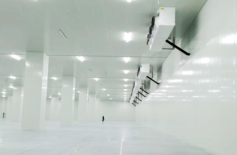 大型冷冻冷藏仓储库